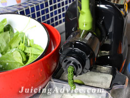 Preparing spinach for juicing recipes.